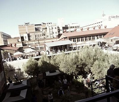 The Arts on Main Courtyard with lovely olive and lemon trees. A sanctuary in the middle of the c