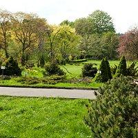 Provided by Botanic Garden
