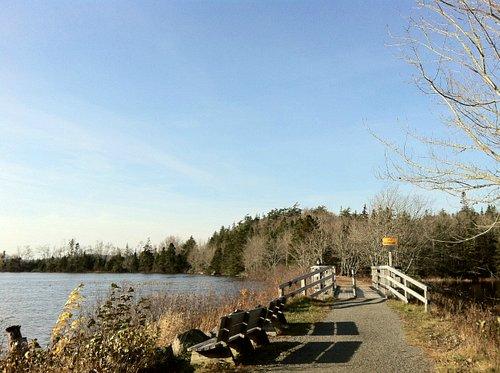 Trail goes along Musquodoboit River