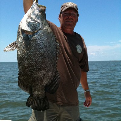 Big tripletail await your fishing desires!