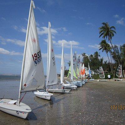 A range of international dinghy designs: Laser Standards, Laser Radials, RS Fevas, RS Teras, Ope