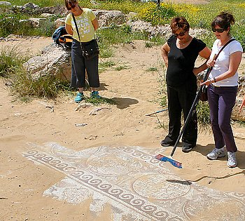 See-Israel Private Touris Guide - Mosaic