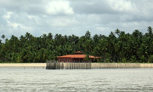 Xareu is an active coconut plantation and this is a view of the family residence there.