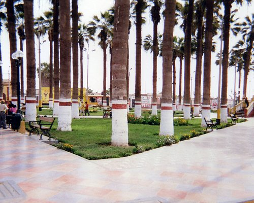 The Plaza del Armas (Main Square) where people go to relax, meditate, read, and chat. There are