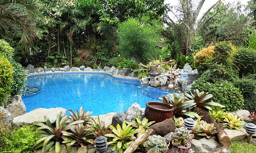 Several swimming pools to choose from.
