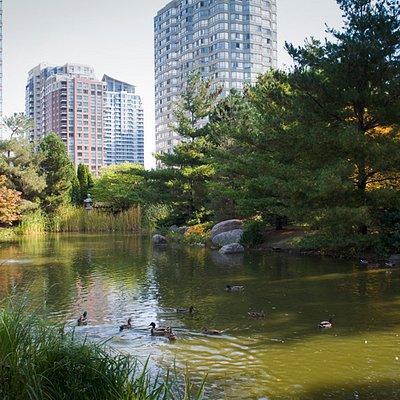 Kariya Park pond