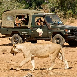 in game drive