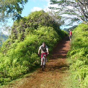 Cyclists also use the trail.