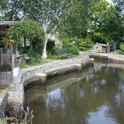 Mill pond at St Dogmaels