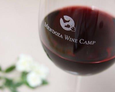 Mendoza Wine Camp