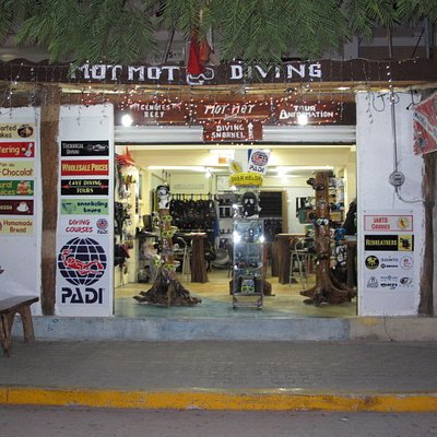 Motmot Diving