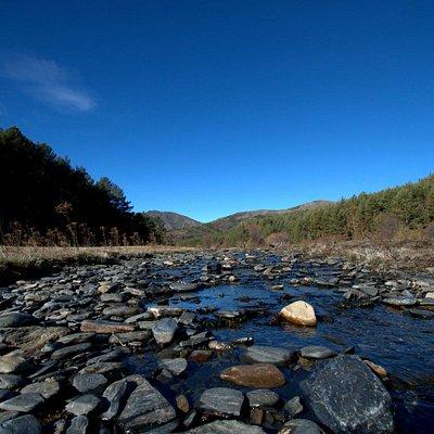 El rio del Hayedo