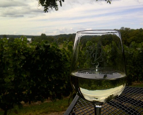 View while enjoying a glass of BHV wine...