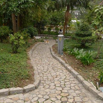Jardim da Montanha Russa(5)