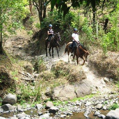 Horse Trek Monteverde Rides