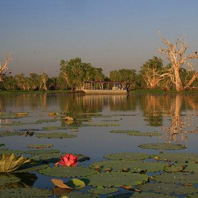 Scenic Wetlands