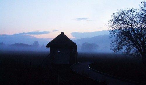 Misty Celtic Shelter