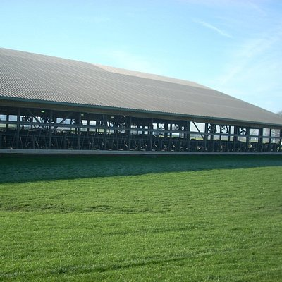 One of the cow barns at Kreider Farms