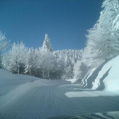 スキー場への道