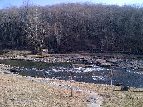 Patapsco River View