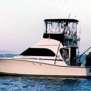 Sea Dog Sportfishing Charter Boat. Sheboygan WI