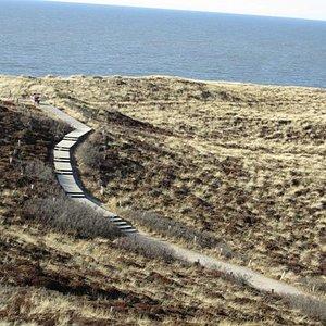 Blick in die Dünenlandschaft + Meer