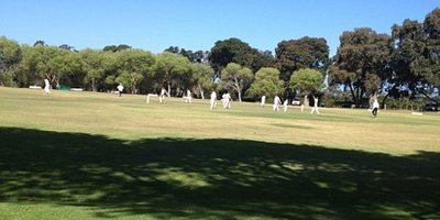 cricket game at Constantia uitsig