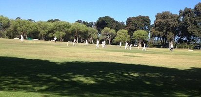 cricket game at Constantia uitsig