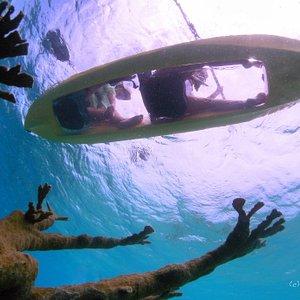 Leeward side reef tours