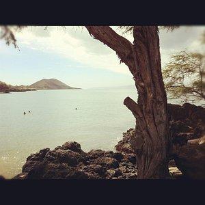 View of snorkeler's enjoying Makena Landing