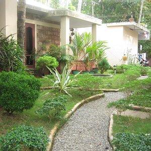 Garden in front of the standard rooms