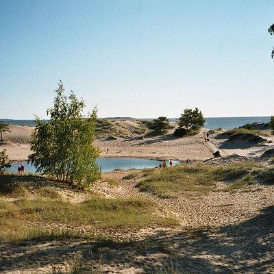 Yyteri beach and sand dunes, Pori