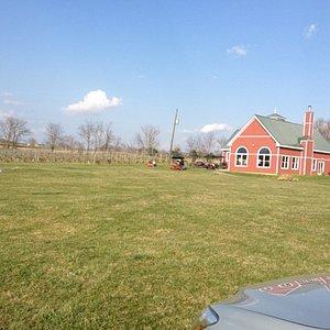 Phillip Carter Schoolhouse View