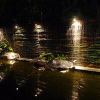 Waterfalls at the park