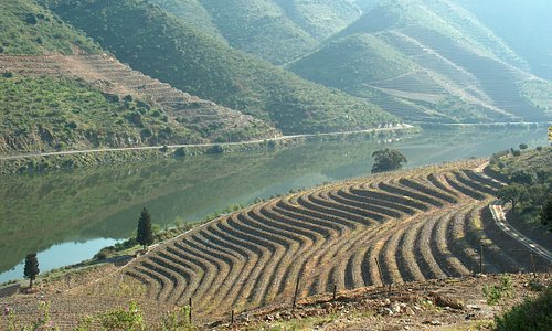 Douro, Wine Region