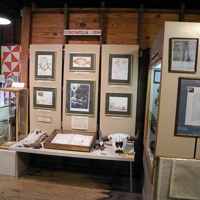 Cuscowilla Exhibit