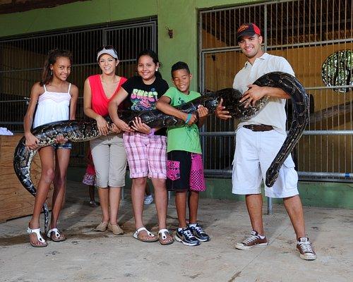 snake pics
