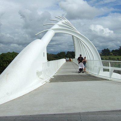 Te Rewa Rewa bridge - on a cloudy day