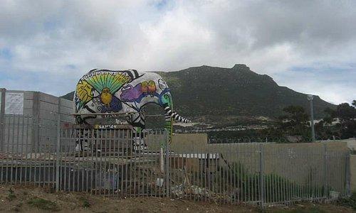 Elephant statue greets visitors to Imizamo Yethu