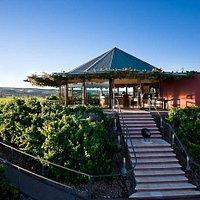 """Great Wines, Great Views. McLaren Vale's """"Must Visit"""" Tasting Room"""