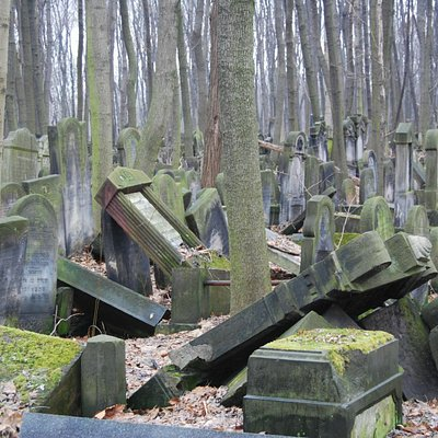 Fallen tombstones, Warsaw Jewish Cemetery