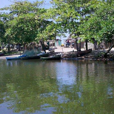 Miami Honduras, viewed from the lagoon
