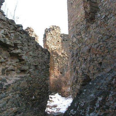 Colt citadel