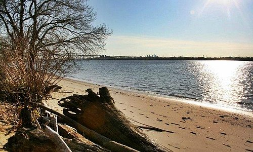 A view of the Delaware river and beech with Betsy Ross Bridge and Philly skyline in the backgrou