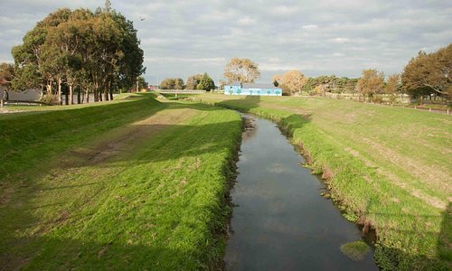 Along the length of Turnbull Thompson Park