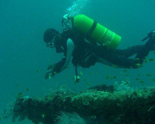 Diving the Al-Saud Ship-wreck