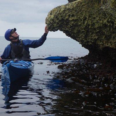 sea kayaking at Old Harry Rocks!