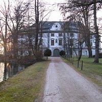 Allee zum Schloss Kammer im Winter
