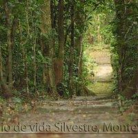 Entrance to Monteverde Wildlife Refuge