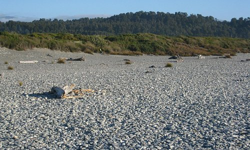 Cobbles at Gillespies Beach